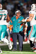 ARLINGTON, TX - NOVEMBER 24:   Head Coach Tony Sparano of the Miami Dolphins congratulates his team coming off the field during a game against the Dallas Cowboys at Cowboys Stadium on November 24, 2011 in Arlington, Texas.  The Cowboys defeated the Dolphins  20 to 19.  (Photo by Wesley Hitt/Getty Images) *** Local Caption *** Tony Sparano Sports photography by Wesley Hitt photography with images from the NFL, NCAA and Arkansas Razorbacks.  Hitt photography in based in Fayetteville, Arkansas where he shoots Commercial Photography, Editorial Photography, Advertising Photography, Stock Photography and People Photography