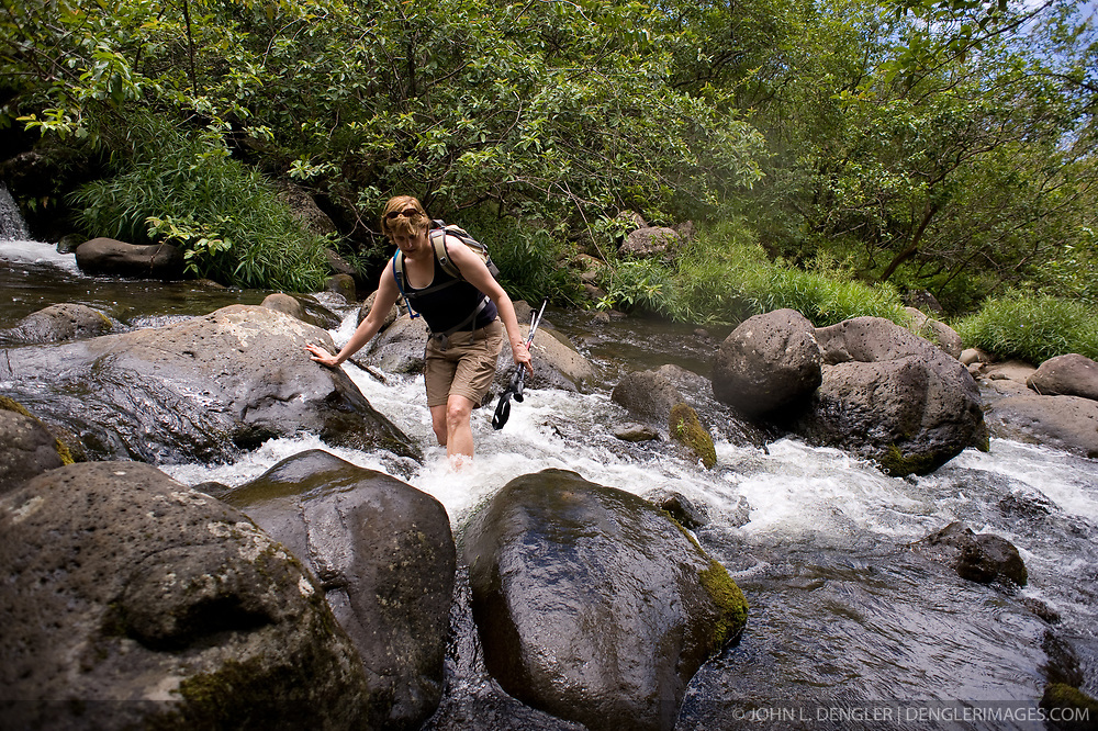A hiker crosses the Hanakapiai Stream on side trail of the Kalalau Trail that leads to Hanakapiai Falls in Na Pali Coast State Wilderness Park on the north shore of the island of Kauai in Hawaii. The two mile primitive trail from Hanakapiai Beach passes by an old coffee farm and crosses the stream several times before reaching the 120 ft. falls. From the trailhead at Kee Beach in Haena State Park, the strenuous hike to Hanakapiai falls is eight miles roundtrip.