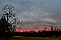 Backyard Winter Dawn Sky in New Jersey. Composite of 5 images taken with a Leica T camera and 11-23 mm lens (ISO 200, 18 mm, f/4.2, 1/40 sec). Raw images processed with Capture One Pro and the panorama generated using AutoPano Giga Pro.