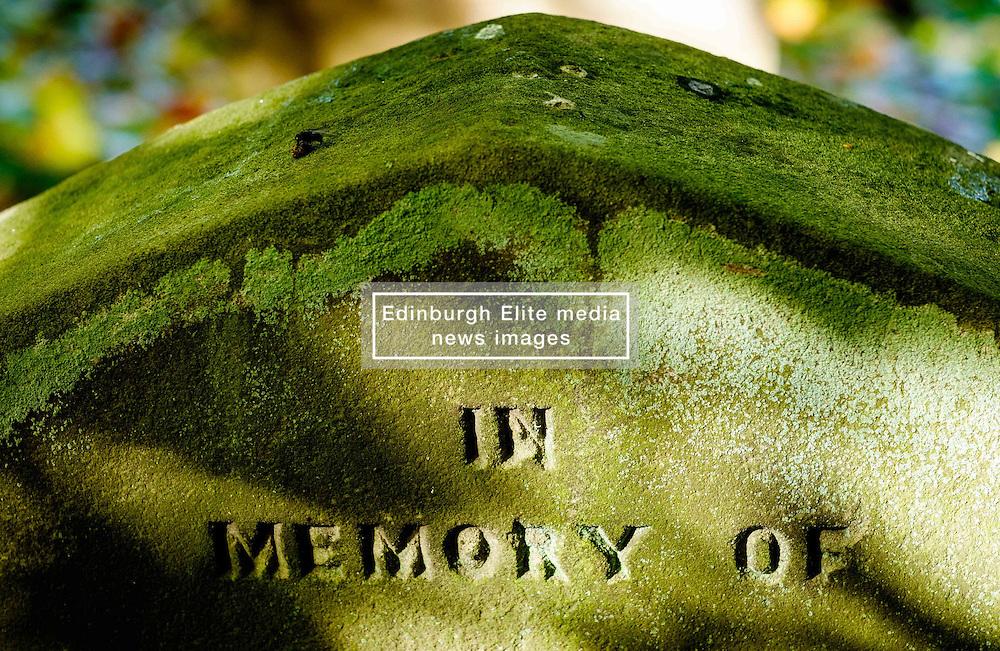 Close up detail of gravestone at Melrose Abbey, Melrose. Scottish Borders<br /> <br /> (c) Andrew Wilson   Edinburgh Elite media