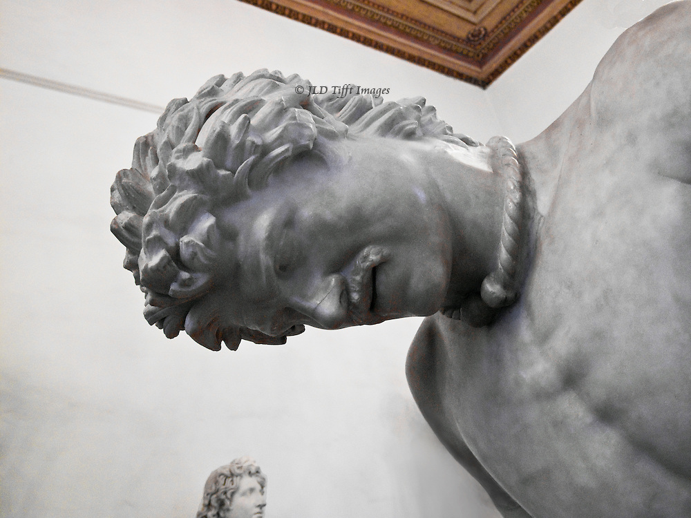 Dying Gaul statue, detail of head and face