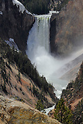 A view of the Lower Falls in Yellowstone Grand Canyon, seen from Artist Point