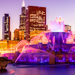 Photo of Chicago skyline at night with Buckingham Fountain and the Willis Tower skyscraper (Sears Tower). The Clarence F. Buckingham Memorial Fountain is a Chicago landmark and very popular attraction located in Grant Park in the downtown Chicago Loop. Photo is high resolution and has a toned treatment.