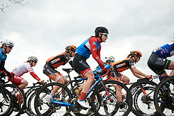 Kathrin Hammes (GER) in the bunch at Healthy Ageing Tour 2019 - Stage 2, a 134.4 km road race starting and finishing in Surhuisterveen, Netherlands on April 11, 2019. Photo by Sean Robinson/velofocus.com