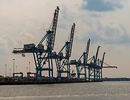 Norfolk, VA, USA -- June 6, 2019. A photo of a row of shipyard cranes set against a bright hazy sky in Port Virginia, Norfolk.