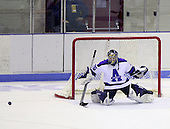NCAA Div III Women's Ice Hockey - Stevens Point v Amherst