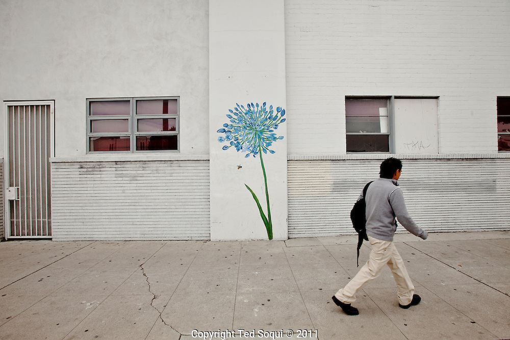Street art in Los Angeles..L.A. has become the new ground zero for avant-guard and cutting edge street and graffiti. Artist from around the world now come to L.A. to post their work..Hand painted flower on the side of a building on La Brea ave..