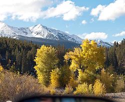 Fall along 10-mile Creek, Summit County, Colorado.