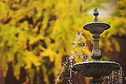 Autumn colors decorate Ohio University campus near the fountain outside of Alden Library on November 3, 2016.