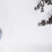 Owen Dudley and Tyler Hathcer skin in the Cascades during a major winter storm whiteout.