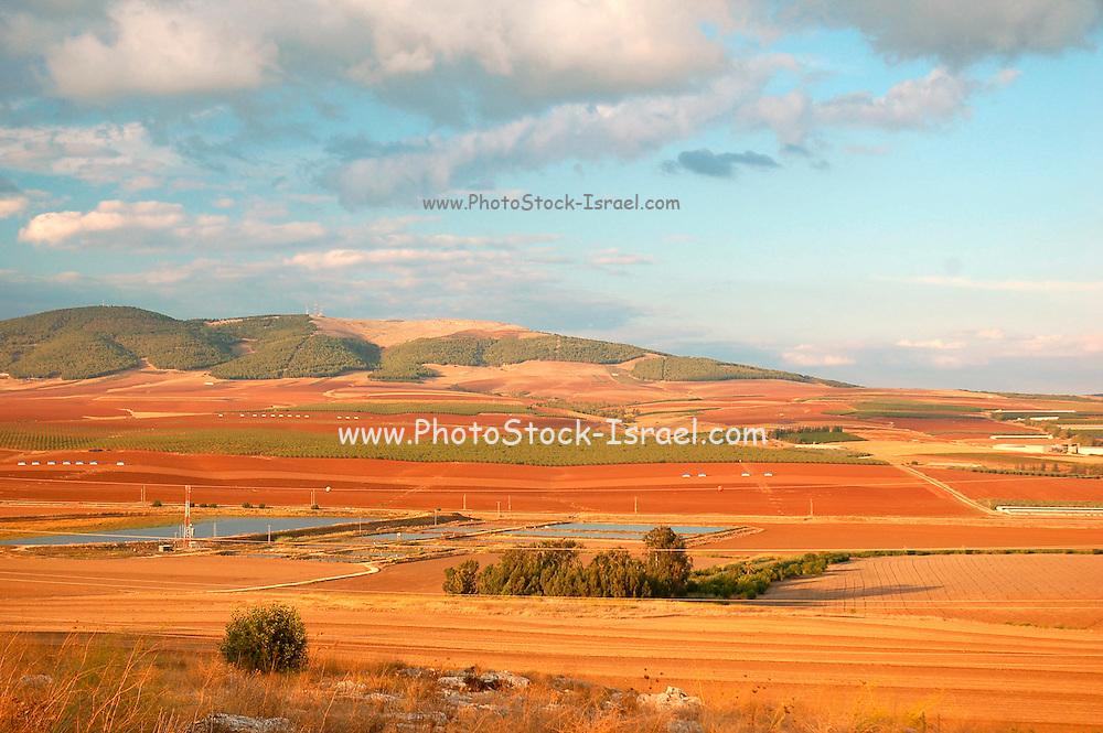 Israel, Jezreel, valley, Kibbutz Tel Yosef, the fields around the Kibbutz, Northern Israel