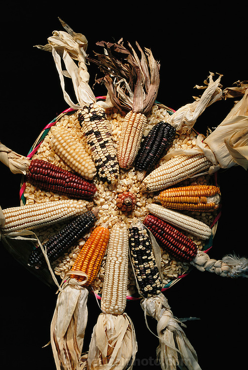 "Native corn seed examples (known as ""landraces"") from Oaxaca State, Mexico. Oaxaca is thought to be the corn cradle of the Americas: the origin of corn species that were domesticated and that spread all over the world."