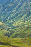 Green hills above Imnaha Canyon, Hells Canyon Recreation Area Oregon