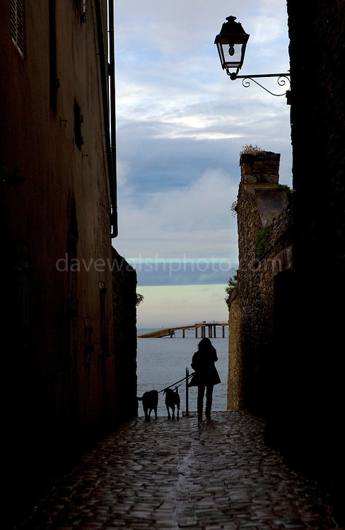"A woman walks her dogs in a laneway at dusk, in Roscoff, Brittany, France This mage can be licensed via Millennium Images. Contact me for more details, or email mail@milim.com For prints, contact me, or click ""add to cart"" to some standard print options."
