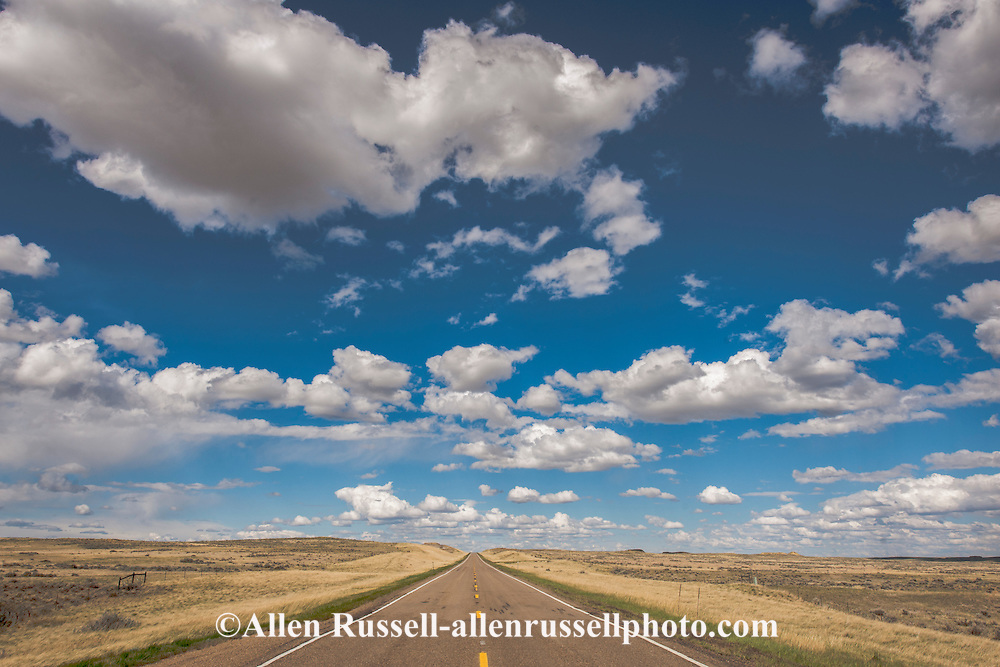 On the road, Highway 200, south of Circle, Montana