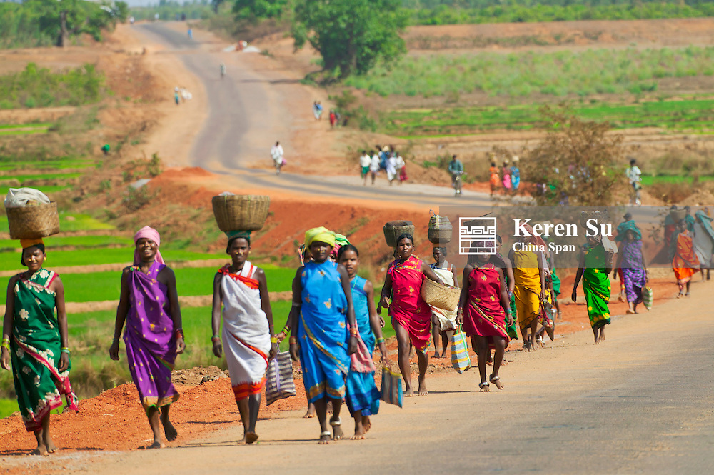 Hill tribespeople walk on the way to Paraja market, Orissa, India