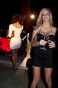 BRITNEY NORRIS, Hosted by Interview Russia.  On behalf of Ferrari, Peter M. Brant and SothebyÕs Tobias Meyer party in honor of FerrariÕs Chairman, Luca di Montezemolo, 1111 Lincoln Road, the iconic car-park in the shopping mall designed by the Pritzker prize winning team Herzog & de Meuron.,  Miami Beach. 29 November 2011.<br /> BRITNEY NORRIS, Hosted by Interview Russia.  On behalf of Ferrari, Peter M. Brant and Sotheby's Tobias Meyer party in honor of Ferrari's Chairman, Luca di Montezemolo, 1111 Lincoln Road, the iconic car-park in the shopping mall designed by the Pritzker prize winning team Herzog & de Meuron.,  Miami Beach. 29 November 2011.