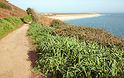Footpath north to Shell beach, Island of Herm, Channel Islands, Great Britain