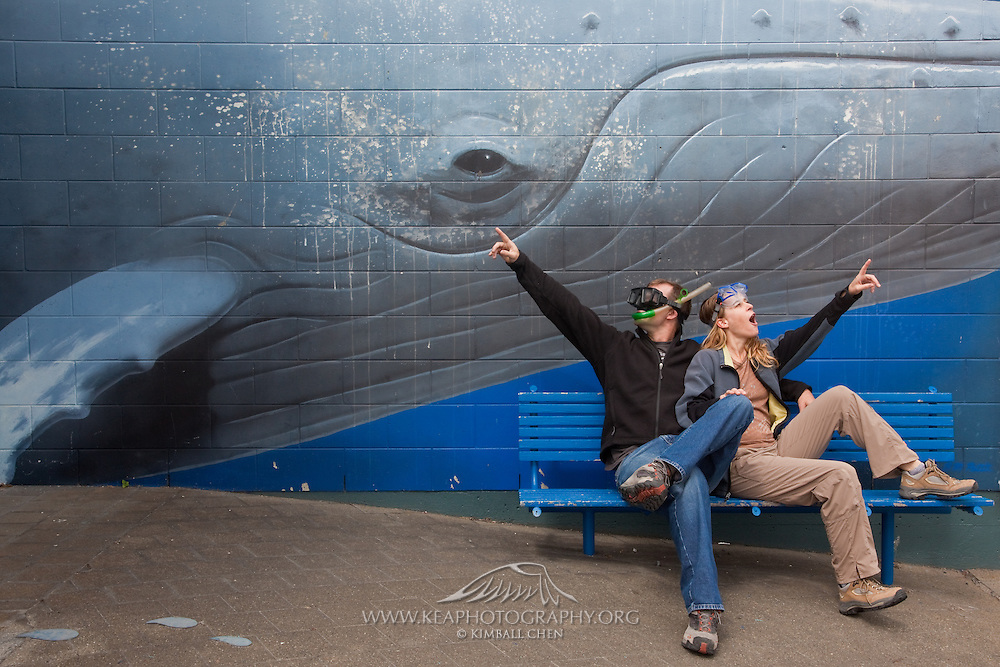 Sperm Whale at Kaikoura library, New Zealand