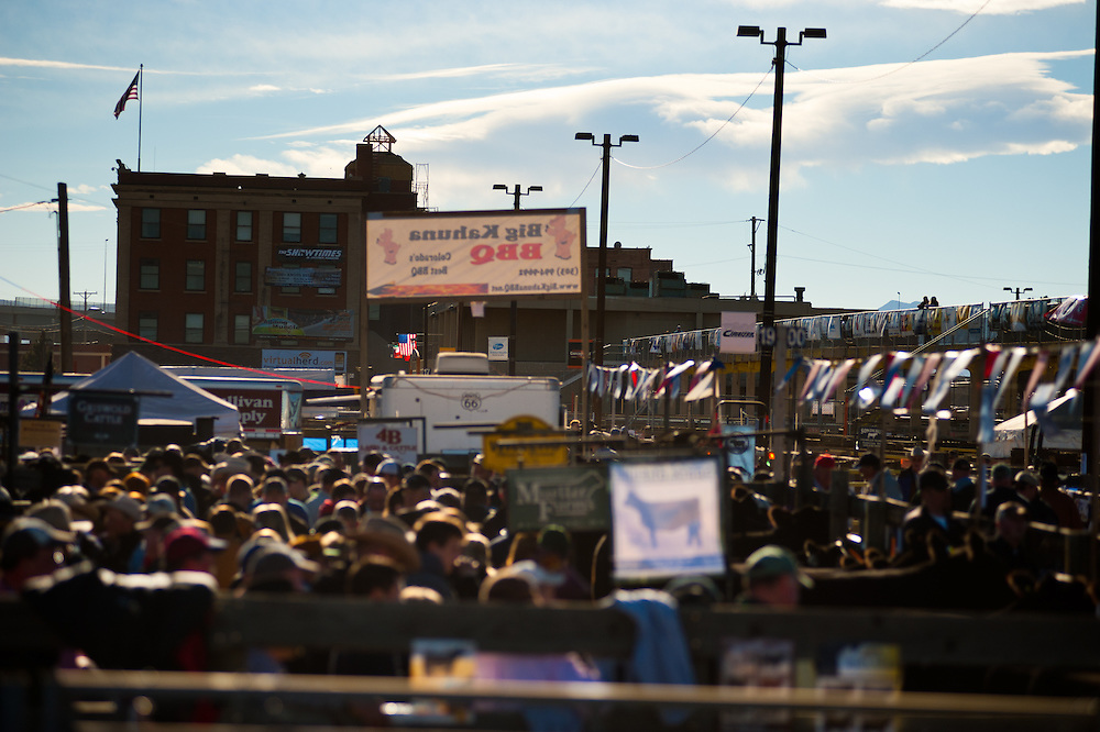 Crowds at the National Western Stock Show in Denver.