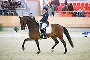 Carola Kulik Paauwe - MoCa's Badoe<br /> KNHS Indoorkampioenschappen 2017<br /> © DigiShots