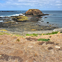 Nobbies and Penguin Shelters at Nobbies on Summerland Peninsula on Phillip Island, Australia<br /> Outside of Nobbies Centre is this remarkable vista. The epicenter of Point Grant is a rock mound called The Nobbies. 1.25 miles in the distance is Seal Rock and Black Rock. 25,000 Australian fur seals plus a colony of seabirds live on these islets (collectively called Seal Rocks) less than 20 acres in size. Dotting the hillside are wooden nesting boxes. The shelters were built in the 1980s to save from extinction the last of Phillip Island&rsquo;s original ten penguin colonies.