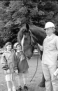 Colonel, Yorkshire Minig Museum's horse. 1993 Yorkshire Miner's Gala. Wakefield.