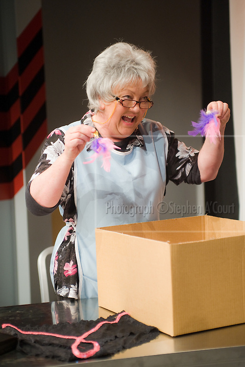 Production photographs of the play Sex Drive, at Circa Theatre, Wellington, 15 Oct - 12 Nov 2011. Written by Lorae Parry and Pinky Agnew, directed by Jane Waddell.  http://www.circa.co.nz/