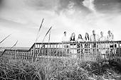 Dollar_BeachPortraits 2014 Port Aransas