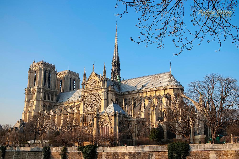 Notre Dame from the  quai de la tournelle
