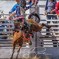 Mini Saddle Bronc Riding
