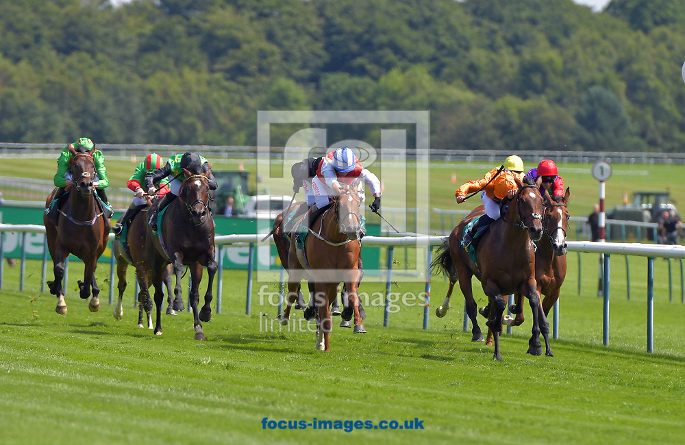 Zenon ridden by Robert Tart (orange) wins bet365 handicap stakes  during the bet365 Old Newton Cup Day meeting at Haydock Park, Merseyside<br /> Picture by Martin Lynch/Focus Images Ltd 07501333150<br /> 08/07/2017