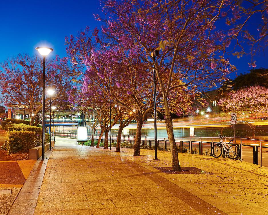 Woolloongabba busway station at dusk, Brisbane, Australia.