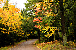 Fall color in the Chequamegon National Forest in northern Wisconsin.