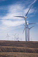 Electricity generating windmills on the Palouse Wheatfields, WA, USA