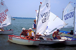 Group of small sailboats in the Gulf of Mexico