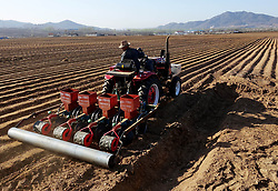 April 27, 2018 - Huludao, China - Peasants are busy with peanut sowing in Huludao, China's Liaoning Province. (Credit Image: © SIPA Asia via ZUMA Wire)