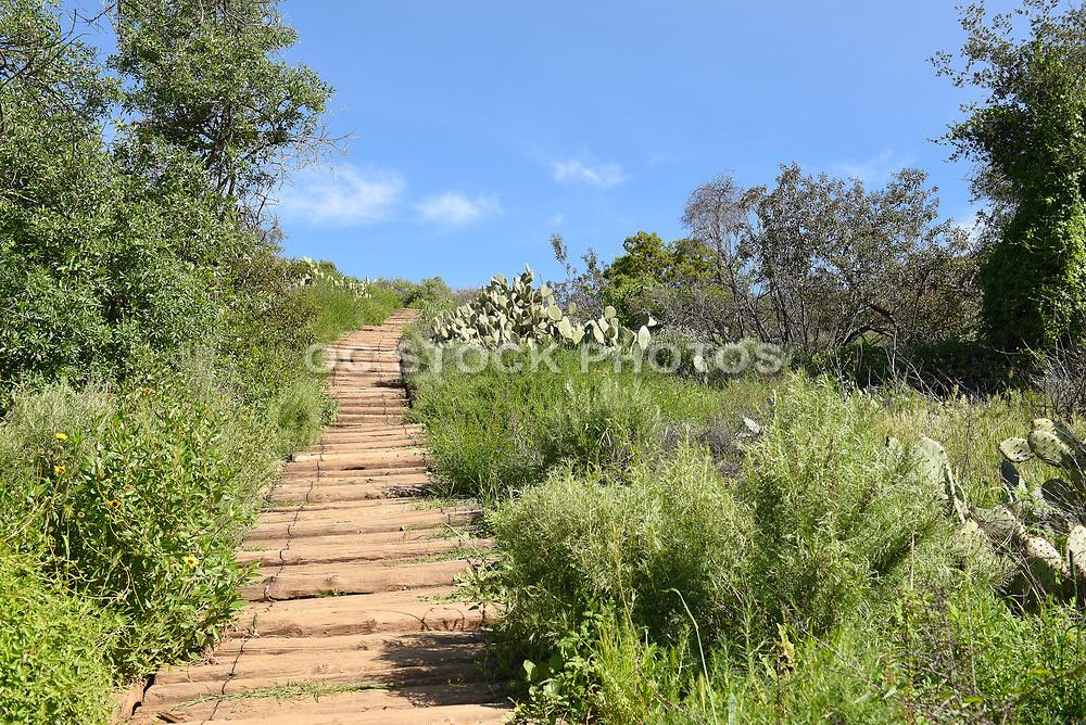 Irvine Regional Park Hiking Trail