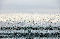 Looking through windows covered with raindrops on the Washington State Ferries in the San Juan Islands, Washington State, USA.