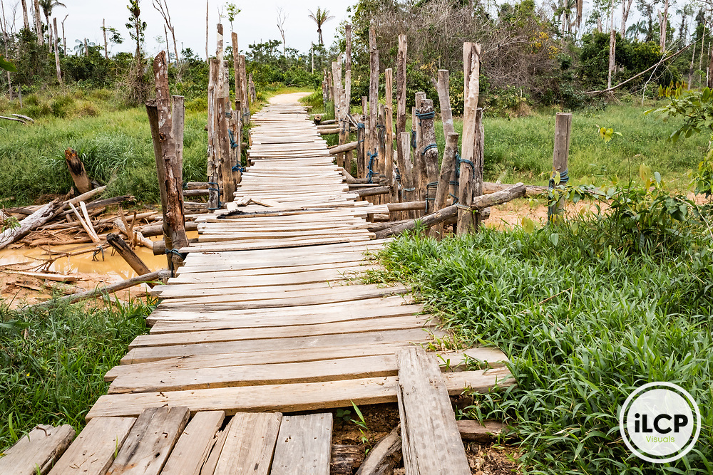 Extensive, if unoffical, infrastructure was created to support the massive mining efforts in La Pampa. The aftermath of illegal and unofficial alluvial gold mining after miners were forcibly removed from the area, showing local pollution and the massive deforestation associated with the process. Following Peru's February 2019 militarized crackdown on illegal and unofficial alluvial gold mining in the La Pampa region of Madre de Dios, Wake Forest University's Puerto Maldonado-based Centro de Innovación Científica Amazonia (CINCIA), a leading research institution for the development of technological innovation for biological conservation and environmental restoration in the Peruvian Amazon, is applying years of scientific research and technical experience related to understanding mercury contamination and managing Amazonian ecosystems. What they learn will help guide urgent remediation, restoration, and reforestation efforts that can also serve as models for how we address the tropic's most dramatically devastated landscapes around the world. La Pampa, Madre de Dios, Peru.