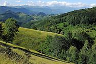 Domogled National park, Southern Carpathians, Romania, Rewilding Europe site