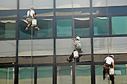 A group of three people cleaning the windows while tied to a rope