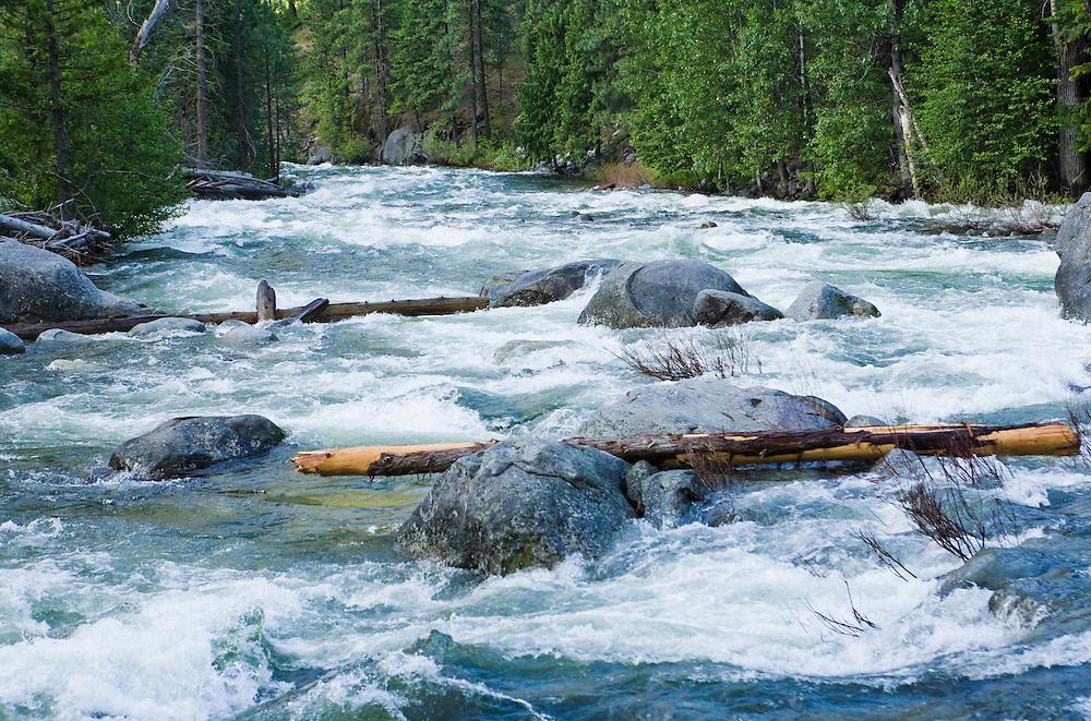 Icicle Creek in June.  Washington Cascades, USA.