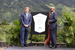 Prince Harry unveils the St. Kitts and Nevis dedication to The Queen's Commonwealth Canopy Project at Brimstone Hill Fort after arriving on the island of St Kitts for the second leg of his Caribbean tour.