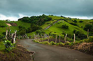 Philippines, Batanes. A narrow road nearby Mahatao Hedgerows after rain.