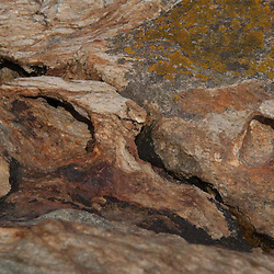 Rock Face Detail, Lower Negro Island, Castine, Maine, US