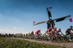 Peloton with riders of Lampre - Merida (ITA) on the Molendijk at Batenburg, stage 2 from Arnhem to Nijmegen running 190 km of the 99th Giro d'Italia (UCI WorldTour), The Netherlands, 7 May 2016. Photo by Pim Nijland / PelotonPhotos.com | All photos usage must carry mandatory copyright credit (Peloton Photos | Pim Nijland)