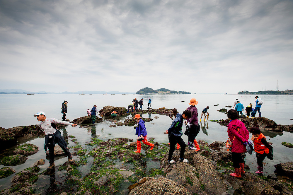 "Thousands of people came to Jindo, South Korea, to see the Jindo ""Miracle"" Sea Festival. Once a year, a 2.8km landbridge is exposed due to low tides. People cross the landbridge from Jindo to a neighboring islet."