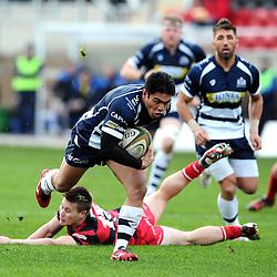 Moseley v Bristol Rugby