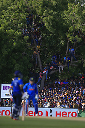 August 20, 2017 - Dambulla, Sri Lanka - Sri Lankan spectators watch the match up on trees during the 1st One Day International cricket match bewtween Sri Lanka and India at Dambulla International cricket stadium situated in the Central Province and the first and only International cricket ground in the dry zone of Sri Lanka on Sunday 20 August 2017. (Credit Image: © Tharaka Basnayaka/NurPhoto via ZUMA Press)